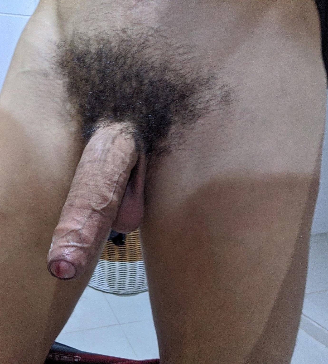 Nice dick with black pubic hair